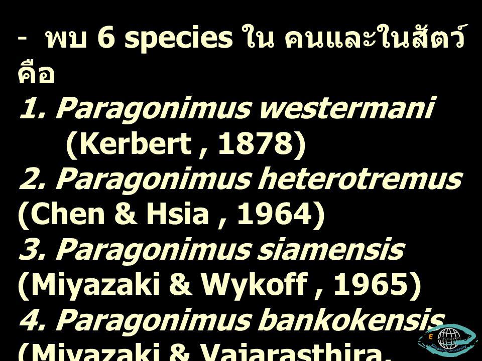 พบที่เป็นสาเหตุของโรค ในคน ได้แก่ Paragonimus westermani (Kerbert, 1878) Paragonimus heterotremus (Chen & Hsia, 1964)
