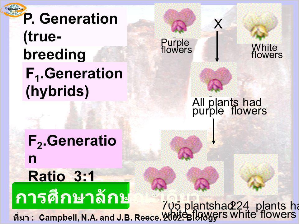224 plants had white flowers 705 plantshad white flowers All plants had purple flowers White flowers Purple flowers X P. Generation (true- breeding pa