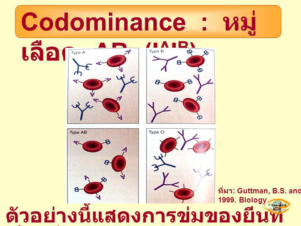 Codominance : หมู่ เลือด AB (I A I B ) ตัวอย่างนี้แสดงการข่มของยีนที่ เรียกว่า Codominance ที่มา : Guttman, B.S. and J.W. Hopkin. 1999. Biology
