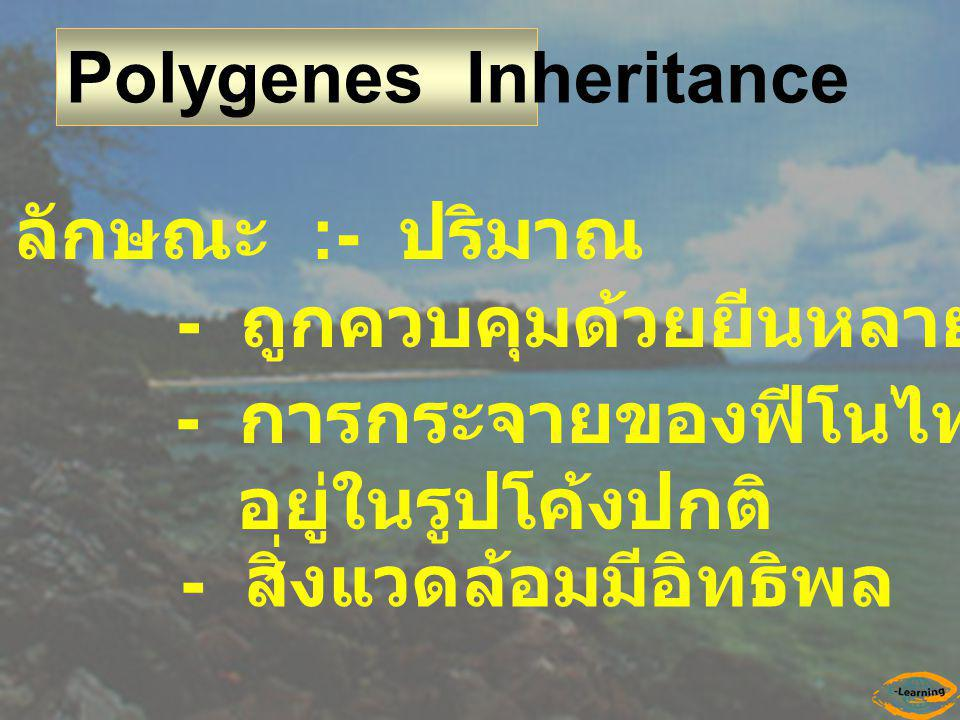 Polygenes Inheritance ลักษณะ :- ปริมาณ - ถูกควบคุมด้วยยีนหลายคู่ - การกระจายของฟีโนไทป์ในประชากร อยู่ในรูปโค้งปกติ - สิ่งแวดล้อมมีอิทธิพล