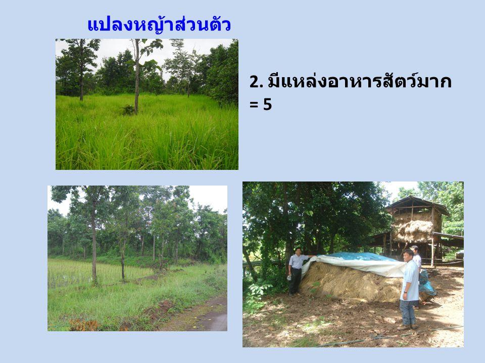แปลงหญ้าส่วนตัว 2. มีแหล่งอาหารสัตว์มาก = 5