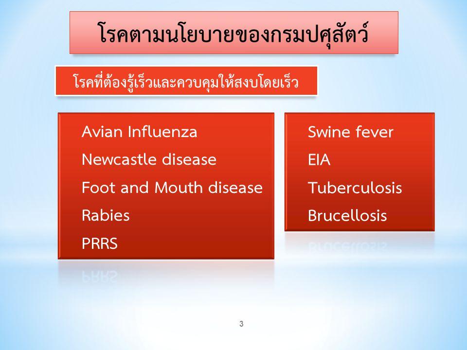 โรคที่จะต้องควบคุมให้เกิดน้อยที่สุด 4 โรคตามนโยบายของกรมปศุสัตว์