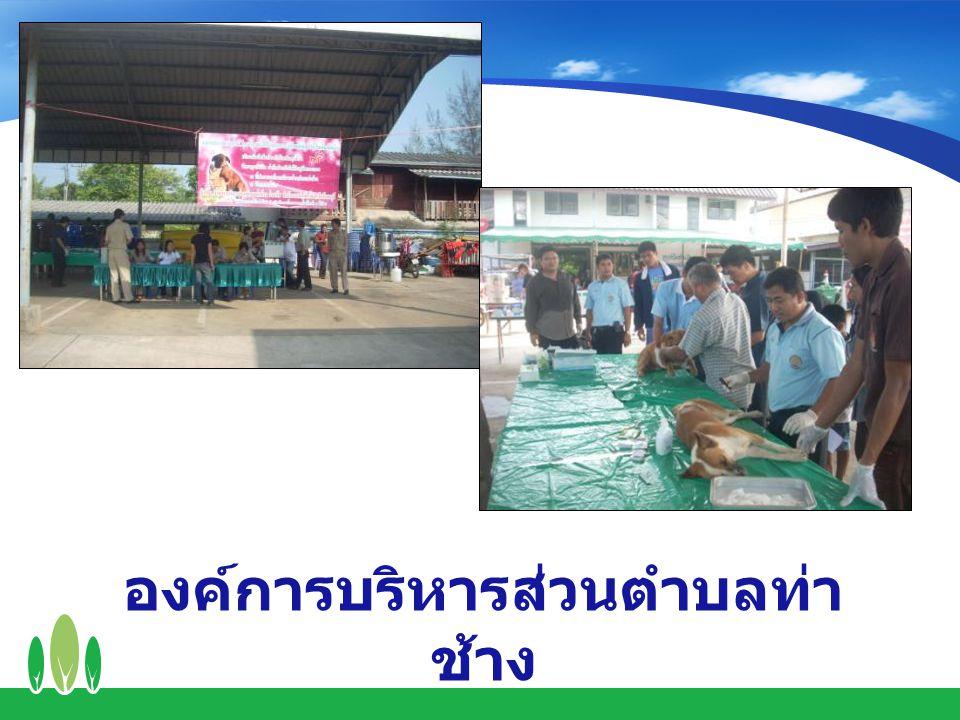 องค์การบริหารส่วนตำบลท่า ช้าง