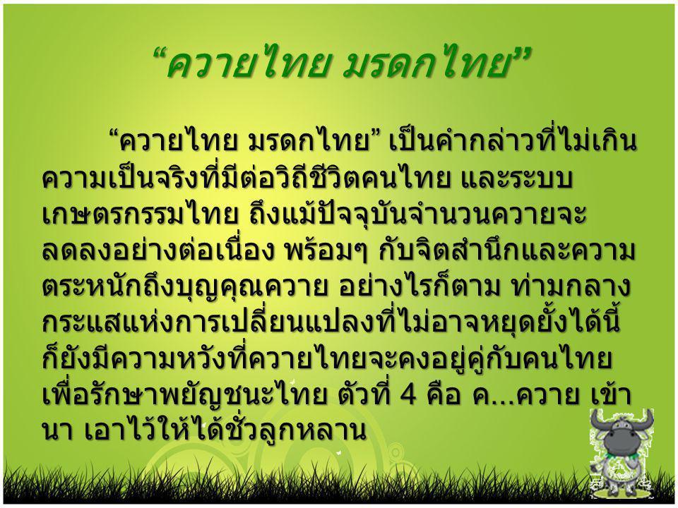 """"""" ควายไทย มรดกไทย """" """" ควายไทย มรดกไทย """" เป็นคำกล่าวที่ไม่เกิน ความเป็นจริงที่มีต่อวิถีชีวิตคนไทย และระบบ เกษตรกรรมไทย ถึงแม้ปัจจุบันจำนวนควายจะ ลดลงอย"""