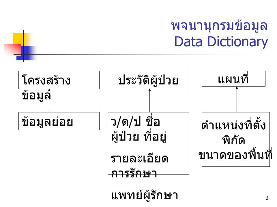 3 พจนานุกรมข้อมูล Data Dictionary โครงสร้าง ข้อมูล ข้อมูลย่อย ประวัติผู้ป่วย ว / ด / ป ชื่อ ผู้ป่วย ที่อยู่ รายละเอียด การรักษา แพทย์ผู้รักษา แผนที่ ต