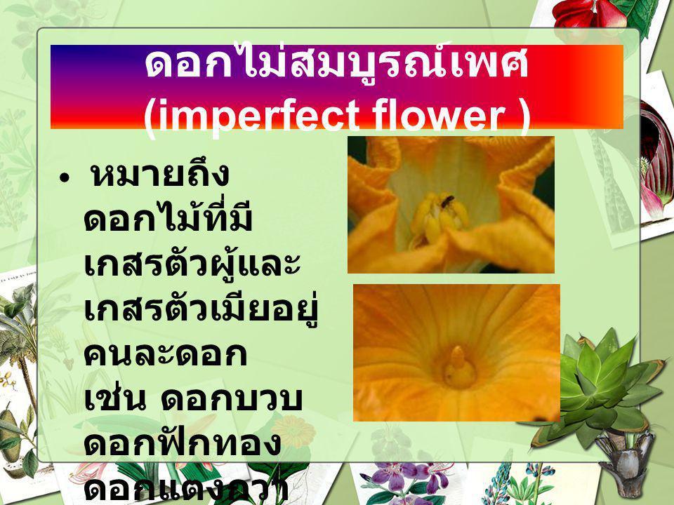 ดอกไม่สมบูรณ์เพศ (imperfect flower ) หมายถึง ดอกไม้ที่มี เกสรตัวผู้และ เกสรตัวเมียอยู่ คนละดอก เช่น ดอกบวบ ดอกฟักทอง ดอกแตงกวา ดอกแตงโม