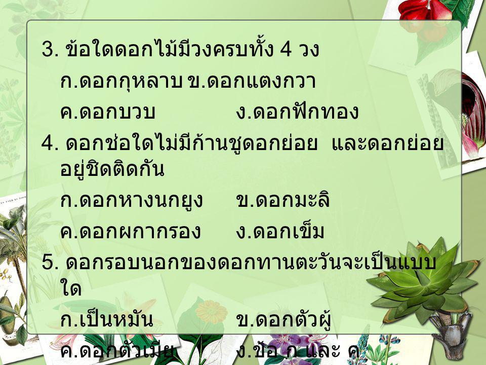 3. ข้อใดดอกไม้มีวงครบทั้ง 4 วง ก. ดอกกุหลาบข. ดอกแตงกวา ค. ดอกบวบง. ดอกฟักทอง 4. ดอกช่อใดไม่มีก้านชูดอกย่อย และดอกย่อย อยู่ชิดติดกัน ก. ดอกหางนกยูงข.