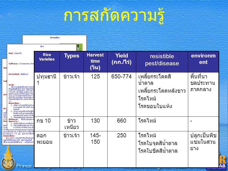 21 Rice Varieties Types Harvest time ( วัน ) Yield ( กก./ ไร่ ) resistible pest/disease environm ent ปทุมธานี 1 ข้าวเจ้า 125650-774 เพลี้ยกระโดดสี น้ำตาล เพลี้ยกระโดดหลังขาว โรคไหม้ โรคขอบใบแห้ง พื้นที่นา ชลประทาน ภาคกลาง กข 10 ข้าว เหนียว 130660 โรคไหม้ - ดอก พะยอม ข้าวเจ้า 145- 150 250 โรคไหม้ โรคใบจุดสีน้ำตาล โรคใบขีดสีน้ำตาล ปลูกเป็นพืช แซมในสวน ยาง การสกัดความรู้