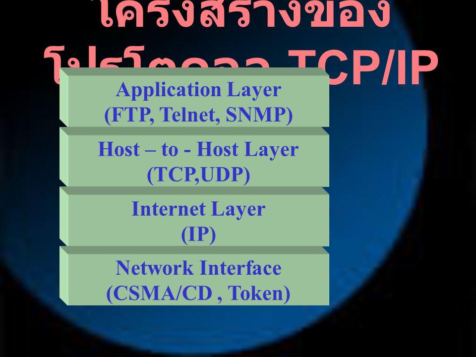ชั้นบน เรียกว่า Application Layer เป็น Application Protocol ทำหน้าที่ เชื่อมต่อกับผู้ใช้ และ ให้บริการต่าง ๆ เช่น FTP, Telnet, SNMP ฯลฯ ทำงาน เปรียบเทียบได้ชั้นที่ 7,6,5 ของ OSI โครงสร้างของ โปรโตคอล TCP/IP Application Layer (FTP, Telnet, SNMP) Host – to - Host Layer (TCP,UDP) Internet Layer (IP) Network Interface (CSMA/CD, Token ฯลฯ )