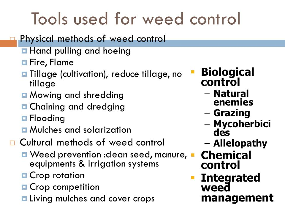 Tools used for weed control  Physical methods of weed control  Hand pulling and hoeing  Fire, Flame  Tillage (cultivation), reduce tillage, no tillage  Mowing and shredding  Chaining and dredging  Flooding  Mulches and solarization  Cultural methods of weed control  Weed prevention :clean seed, manure, equipments & irrigation systems  Crop rotation  Crop competition  Living mulches and cover crops  Biological control –Natural enemies –Grazing –Mycoherbici des –Allelopathy  Chemical control  Integrated weed management
