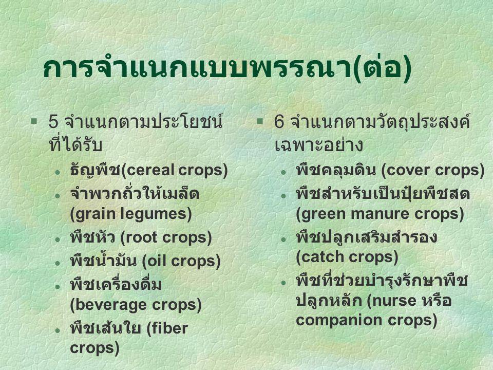 การจำแนกแบบพรรณาลักษณะของพืช 1 จำแนกตามจำนวนปีของปี ของชีพจักรพืช พืชอายุปีเดียว (annuals) พืชคาบปี (biennials) พืชอายุหลายปี (perennials) 2 จำแนกตามโครงสร้างและ ทรงของลำต้น พืชลำต้นอ่อน (herbaceous) ไม้เถา (vines) ไม้พุ่ม (shrubs) ไม้ยืนต้น (trees) 3 จำแนกตามการผลัดใบ ไม้ผลัดใบ (decidous) ไม้ไม่ผลัดใบหรือเขียว ตลอดปี (evergreen) 4 จำแนกตามลักษณะการ ปรับตัวในสภาพภูมิอากาศ ต่างๆ พืชหรือไม้เมืองหนาว (tropical plants) พืชหรือไม้เมืองร้อน (tropical plants) หรือกึ่ง ร้อน