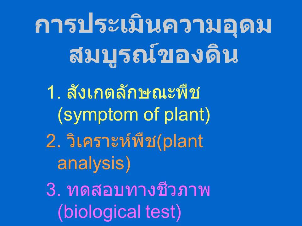 สิ่งมีชีวิตในดิน ได้แก่สิ่งมีชีวิตเล็กๆต่างๆในดิน เช่น แบคทีเรีย เห็ดรา แอคติโนไมซีตีส โปรโตซัว สาหร่าย ไส้เดือนฝอย – แบคทีเรีย พวก heterotrophs autot