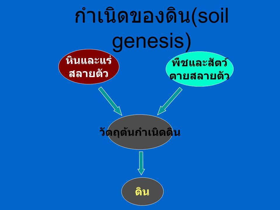 – มี 4 แบบคือ : เม็ดกลมทึบ (granular) แผ่นบาง (platy) ก้อนสี่เหลี่ยม (blocky หรือ subangular blocky) แท่งหัวตัดหรือหัวมน (prismatic หรือ columnar) ดินไม่มีโครงสร้าง (structurless): พบได้ 2 แบบ ดินรวมแล้วยังมีสภาพเป็นเม็ดเดี่ยวๆ (single grain) ดินรวมแล้วยังมีสภาพเป็นมวลแน่นทึบ (massive) การรวมกันของอนุภาคดินต่างๆ : เกิด จาก น้ำ แคทไออน (cation ) สาร คอลลอยด์ฟ (Colloids) ต่างๆในดิน 1.2 โครงสร้างของดิน (Soil Structure)