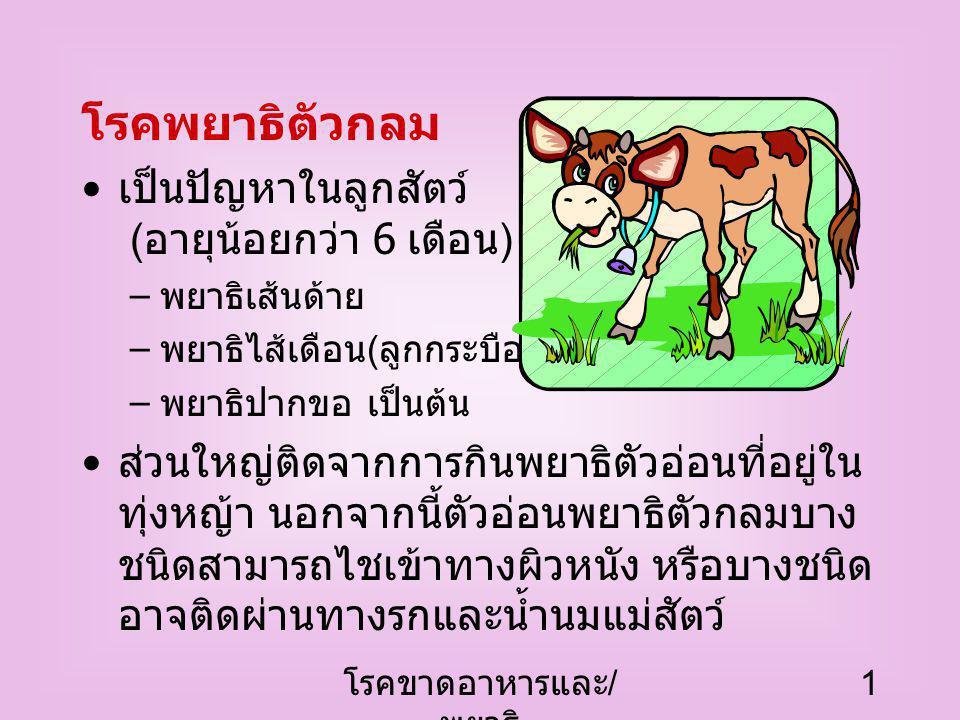 โรคขาดอาหารและ / พยาธิ 1 โรคพยาธิตัวกลม เป็นปัญหาในลูกสัตว์ ( อายุน้อยกว่า 6 เดือน ) เช่น – พยาธิเส้นด้าย – พยาธิไส้เดือน ( ลูกกระบือ ) – พยาธิปากขอ เป็นต้น ส่วนใหญ่ติดจากการกินพยาธิตัวอ่อนที่อยู่ใน ทุ่งหญ้า นอกจากนี้ตัวอ่อนพยาธิตัวกลมบาง ชนิดสามารถไชเข้าทางผิวหนัง หรือบางชนิด อาจติดผ่านทางรกและน้ำนมแม่สัตว์