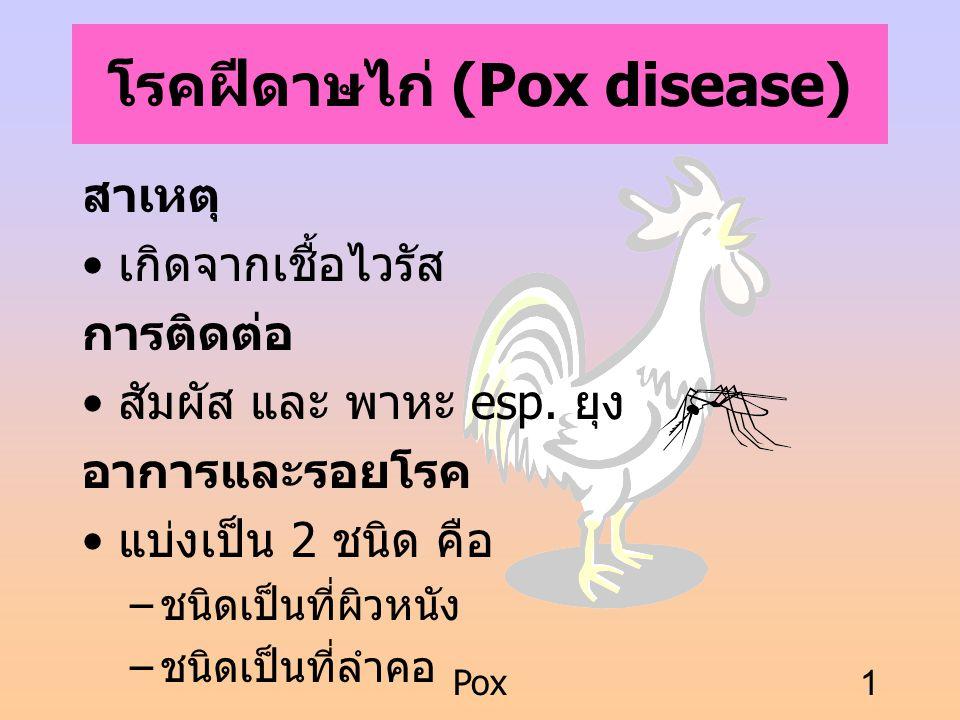 Pox1 โรคฝีดาษไก่ (Pox disease) สาเหตุ เกิดจากเชื้อไวรัส การติดต่อ สัมผัส และ พาหะ esp. ยุง อาการและรอยโรค แบ่งเป็น 2 ชนิด คือ – ชนิดเป็นที่ผิวหนัง – ช