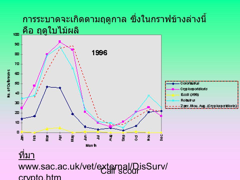 Calf scour กลุ่มอาการท้องเสียในลูกโค (Calf scour) ระบาดวิทยา ส่วนใหญ่เกิดขึ้นในช่วงอายุ 1-3 อาทิตย์ สาเหตุ เกิดจากการติดเชื้อได้หลายชนิด รวมทั้งไวรัส