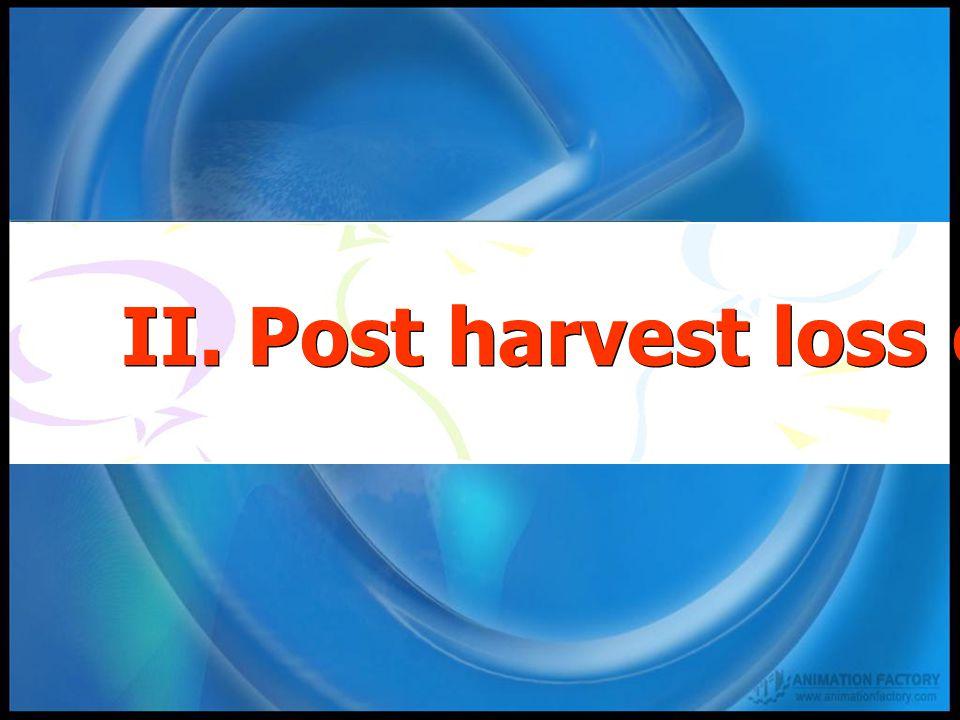 II. Post harvest loss of cereal crop