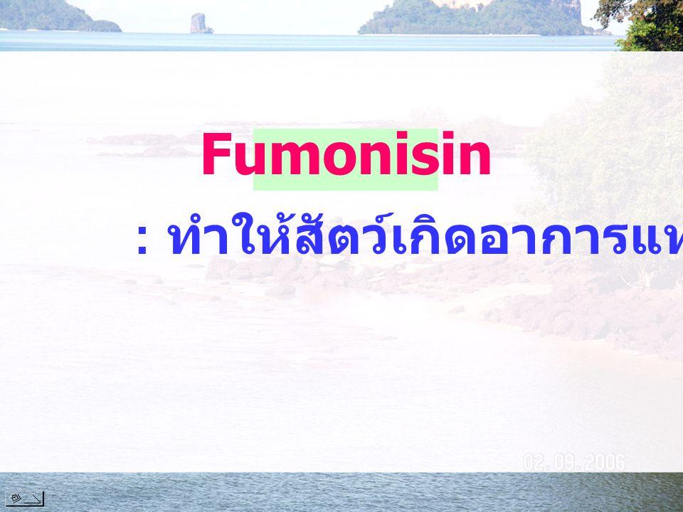 : ทำให้สัตว์เกิดอาการแท้งลูก Fumonisin