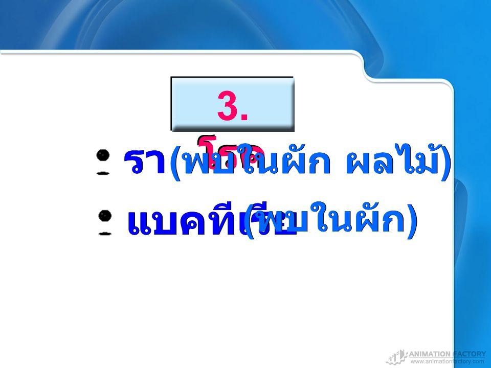 แบคทีเรีย 3. โรค รา ( พบในผัก ผลไม้ ) ( พบในผัก )