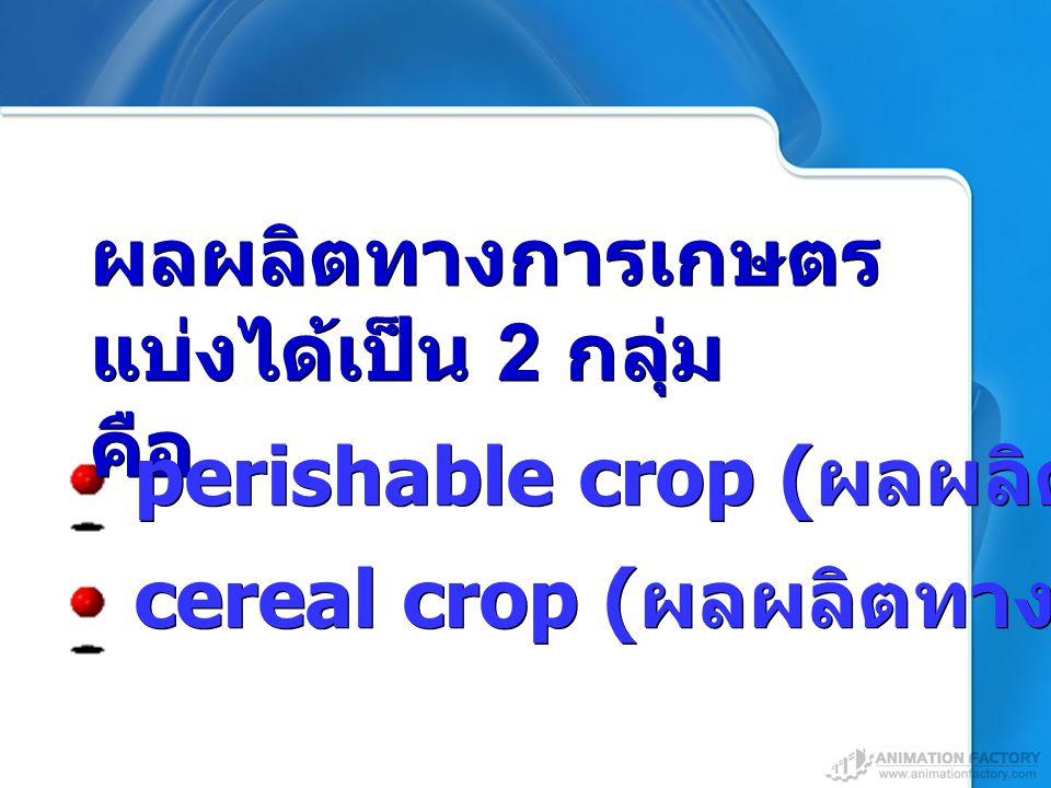 cereal crop ( ผลผลิตทางพืชไร่ ) ผลผลิตทางการเกษตร แบ่งได้เป็น 2 กลุ่ม คือ ผลผลิตทางการเกษตร แบ่งได้เป็น 2 กลุ่ม คือ perishable crop ( ผลผลิตทางพืชสวน