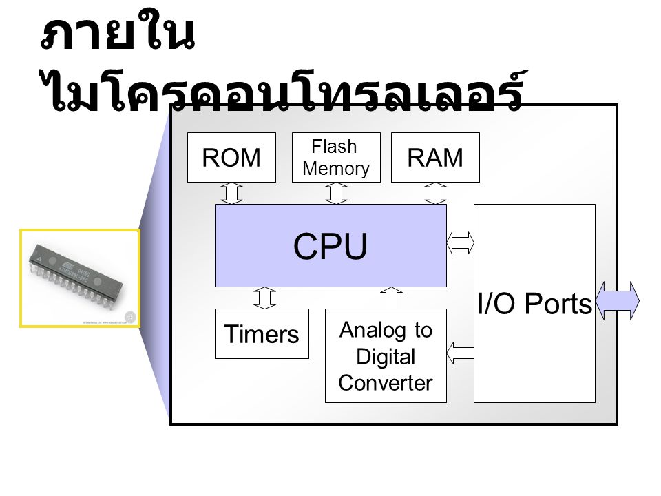 ภายใน ไมโครคอนโทรลเลอร์ CPU I/O Ports Flash Memory RAMROM Analog to Digital Converter Timers