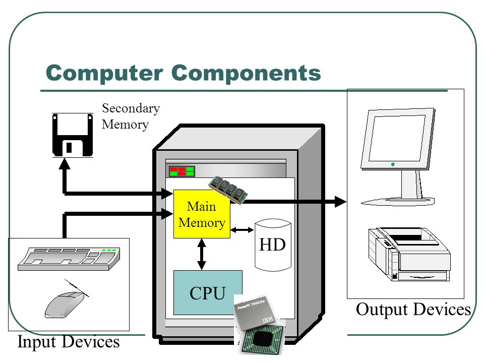 CPU Main Memory HD Computer Components Secondary Memory Input Devices Output Devices