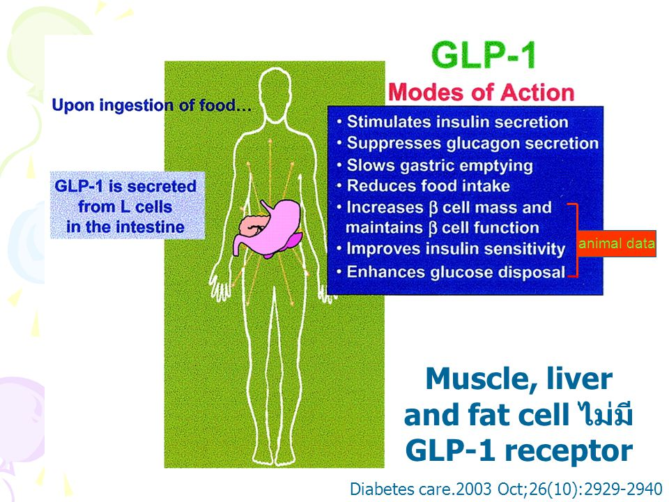 Improved Glycemic Control With No Weight Increase in Patients With Type 2 Diabetes After Once-Daily Treatment With the Long-Acting Glucagon-Like Peptide 1 Analog Liraglutide (NN2211) OBJ : ประเมินประสิทธิภาพ และความปลอดภัย ของ Liraglutide ใน 12 wk ที่รักษาผู้ป่วย T2DM Study : Double-blind, randomized, parallel- group, placebo-controlled trial 193 pts