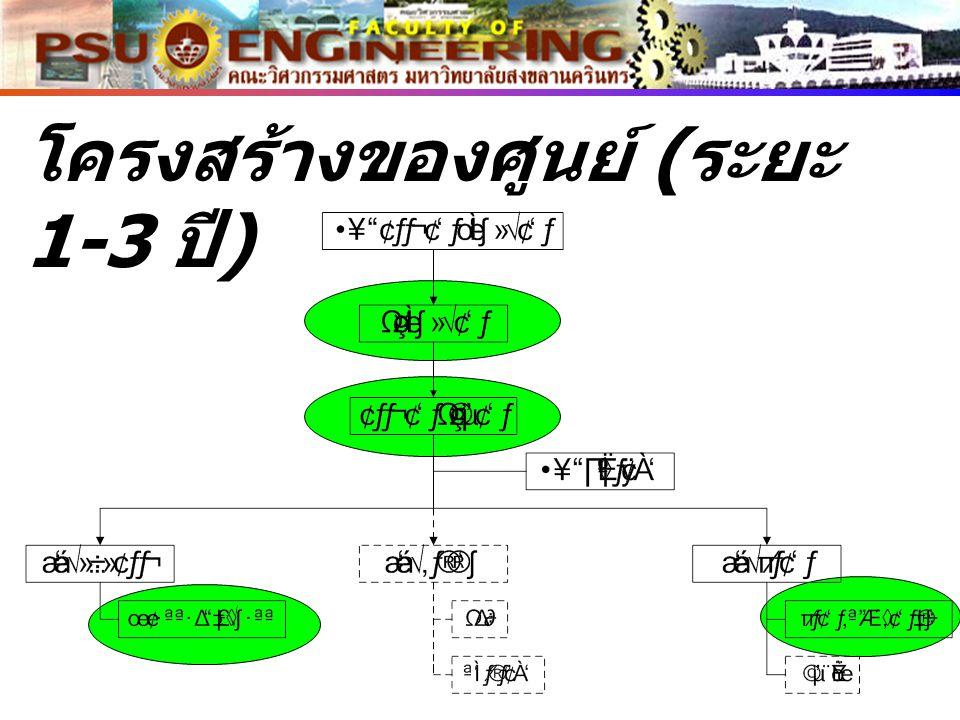 โครงสร้างของศูนย์ ( ระยะ 1-3 ปี )