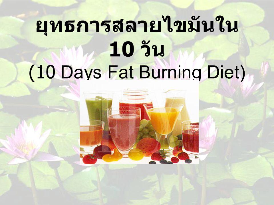 ยุทธการสลายไขมันใน 10 วัน (10 Days Fat Burning Diet)