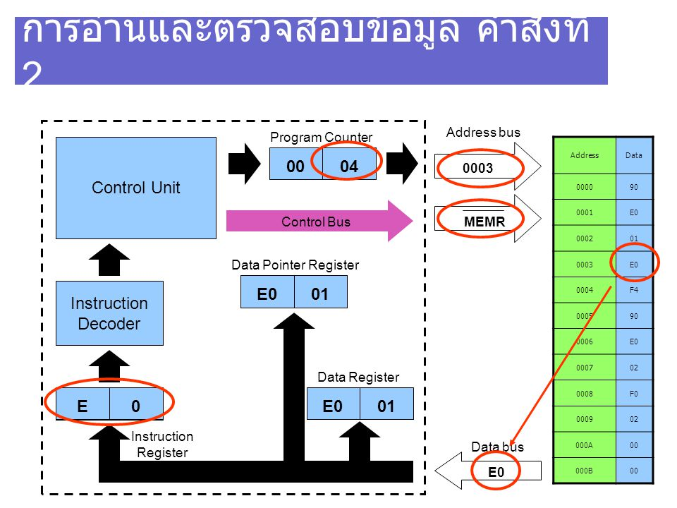 การอ่านและตรวจสอบข้อมูล คำสั่งที่ 2 AddressData 000090 0001E0 000201 0003E0 0004F4 000590 0006E0 000702 0008F0 000902 000A00 000B00 Control Unit Instruction Decoder 90 0003 MEMR Program Counter Address bus 0003 Data bus E0 Instruction Register Control Bus 04 00 Data Pointer Register E001 Data Register E001E0