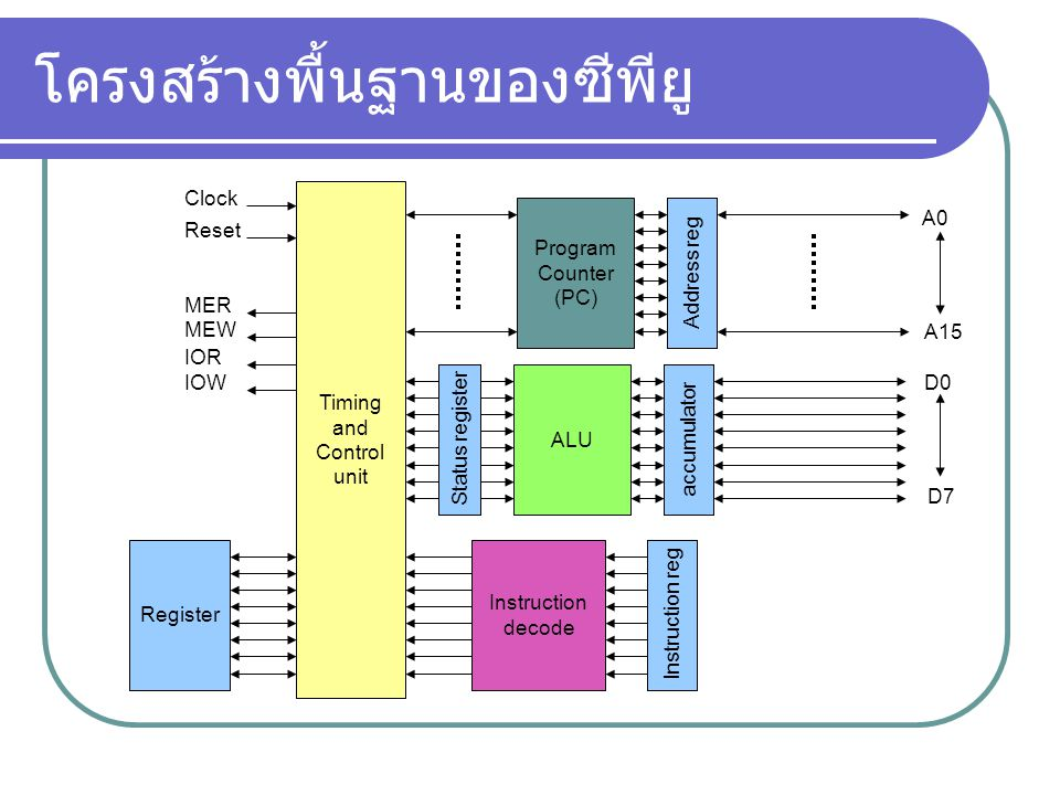 โครงสร้างพื้นฐานของซีพียู Timing and Control unit Register Clock Reset MER MEW IOR IOW Instruction decode Status register ALU accumulator Instruction reg Program Counter (PC) Address reg A0 A15 D0 D7