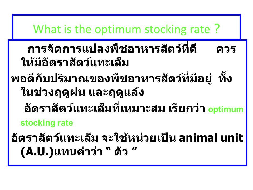 What is the optimum stocking rate ? การจัดการแปลงพืชอาหารสัตว์ที่ดี ควร ให้มีอัตราสัตว์แทะเล็ม พอดีกับปริมาณของพืชอาหารสัตว์ที่มีอยู่ ทั้ง ในช่วงฤดูฝน