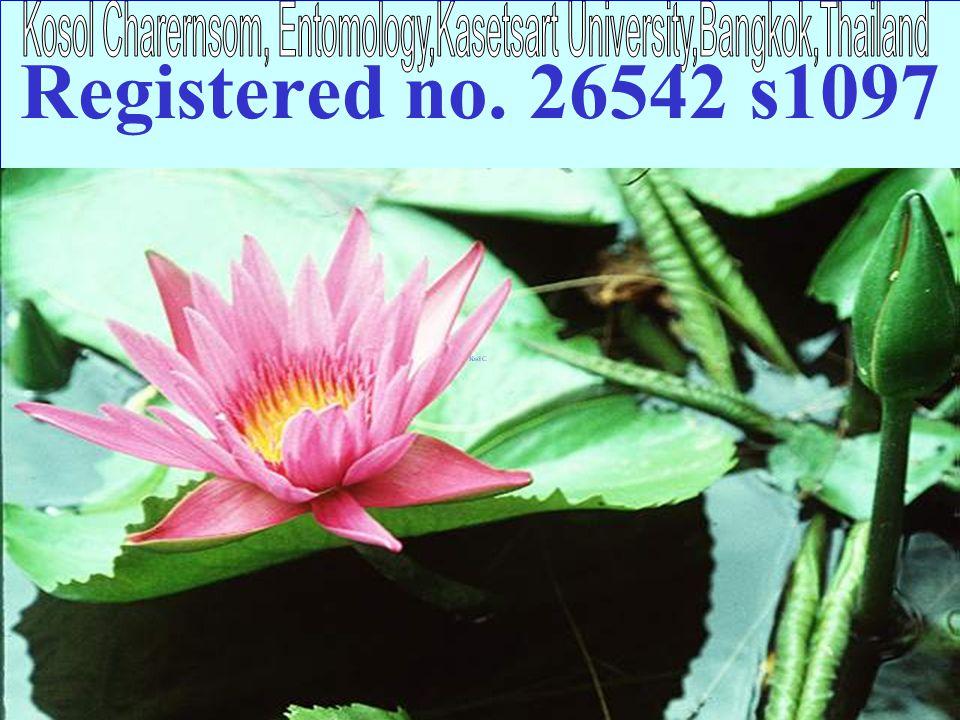 Registered no. 26542 s1097