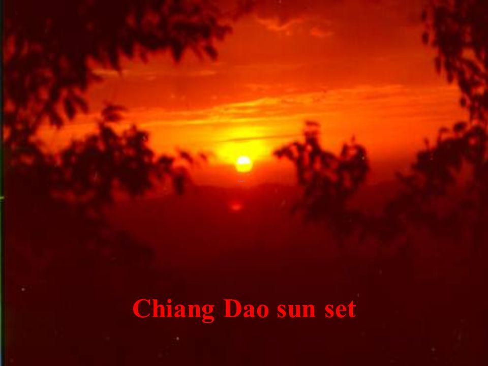 Chiang Dao Morn