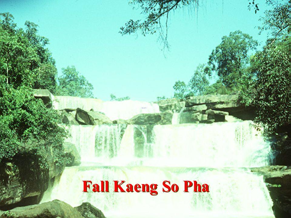 Fall Hnan Sroi Dao