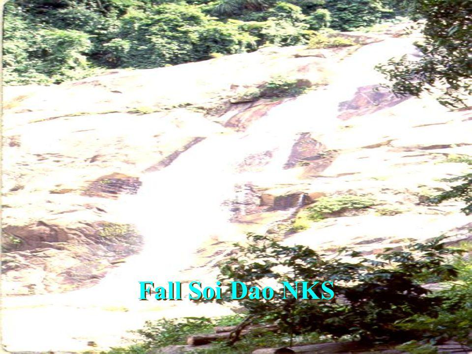 Fall Mae Ya