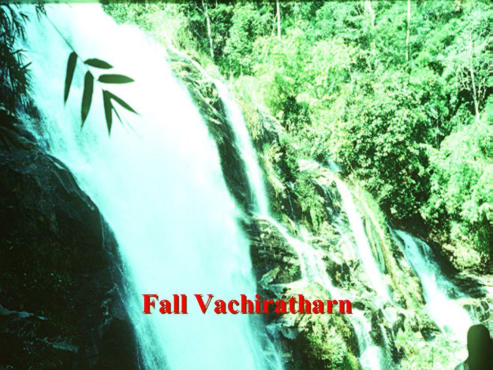 Fall Songavia