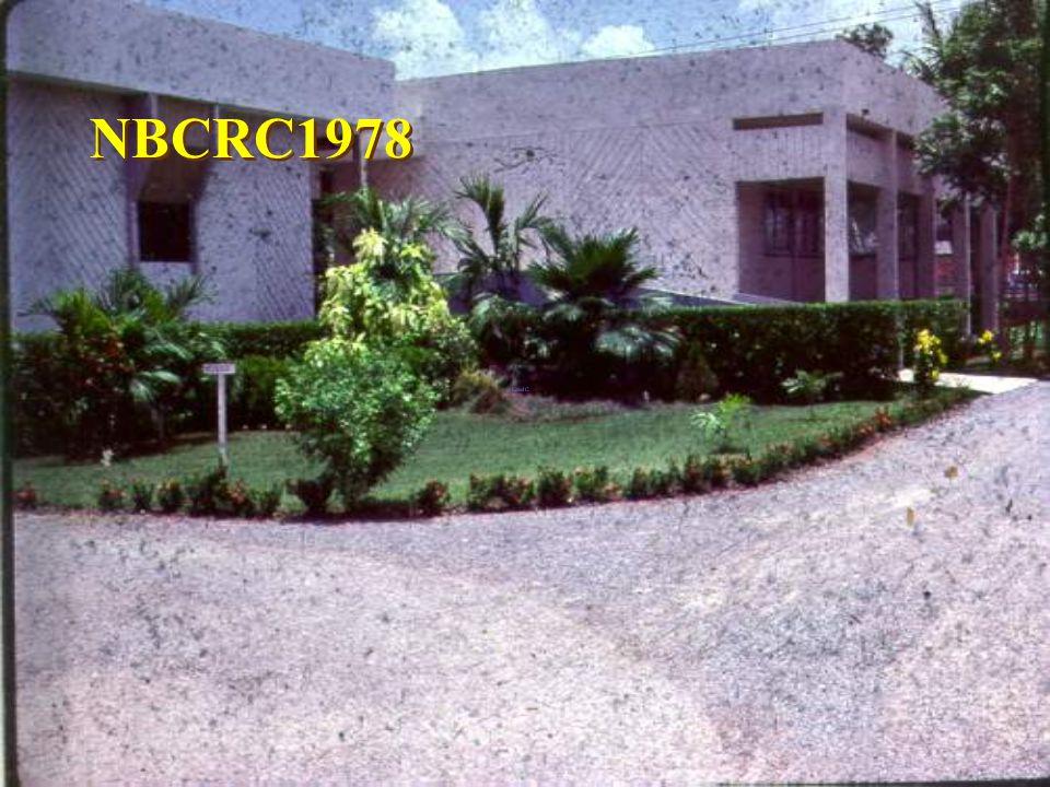 NBCRC HD Q 80