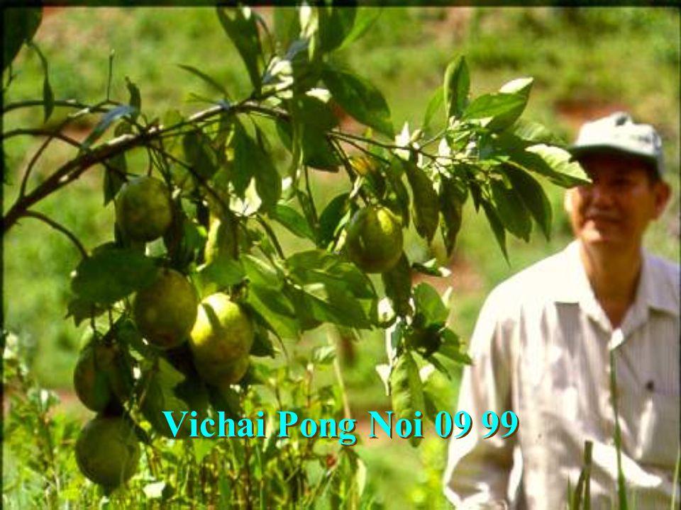 Vichai PN Sep22