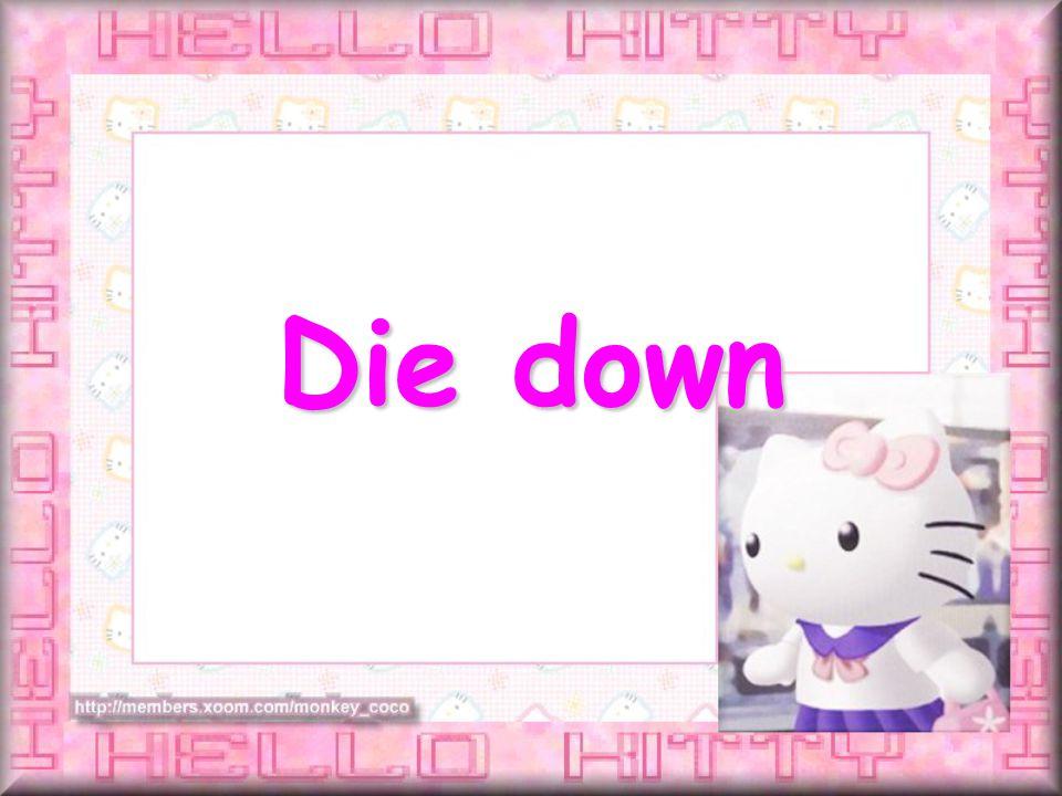Die down