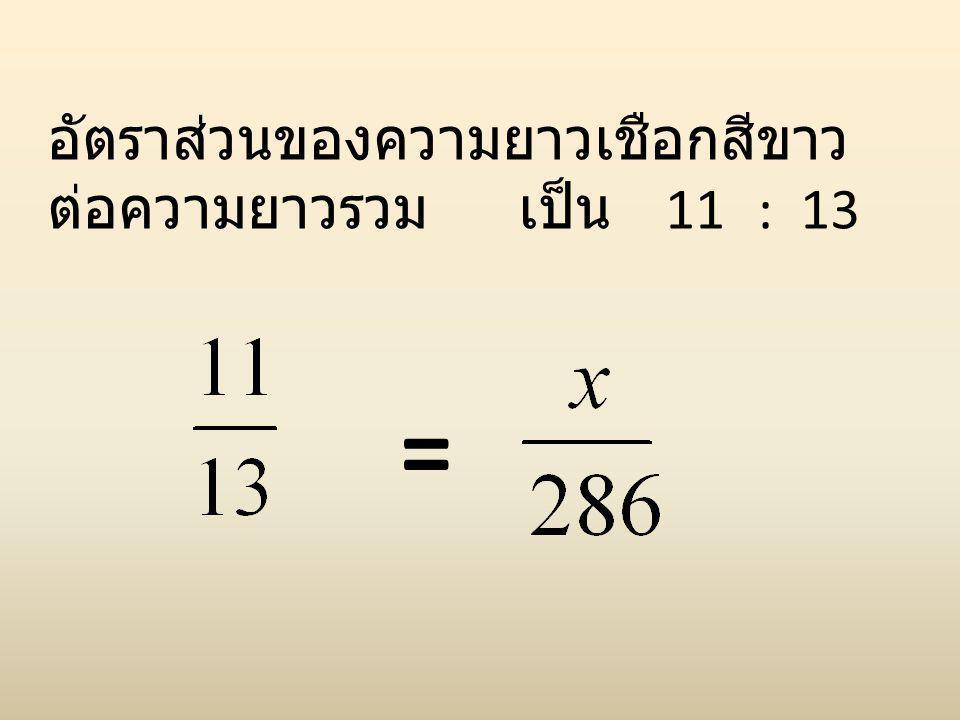 อัตราส่วนของความยาวเชือกสีขาว ต่อความยาวรวม เป็น 11 : 13 =