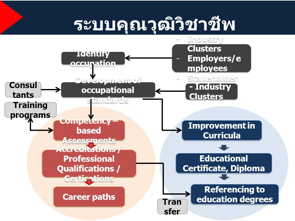 ระบบคุณวุฒิวิชาชีพ Identify occupation Development of occupational standards Consul tants Training programs -Industry Clusters -Employers/e mployees -