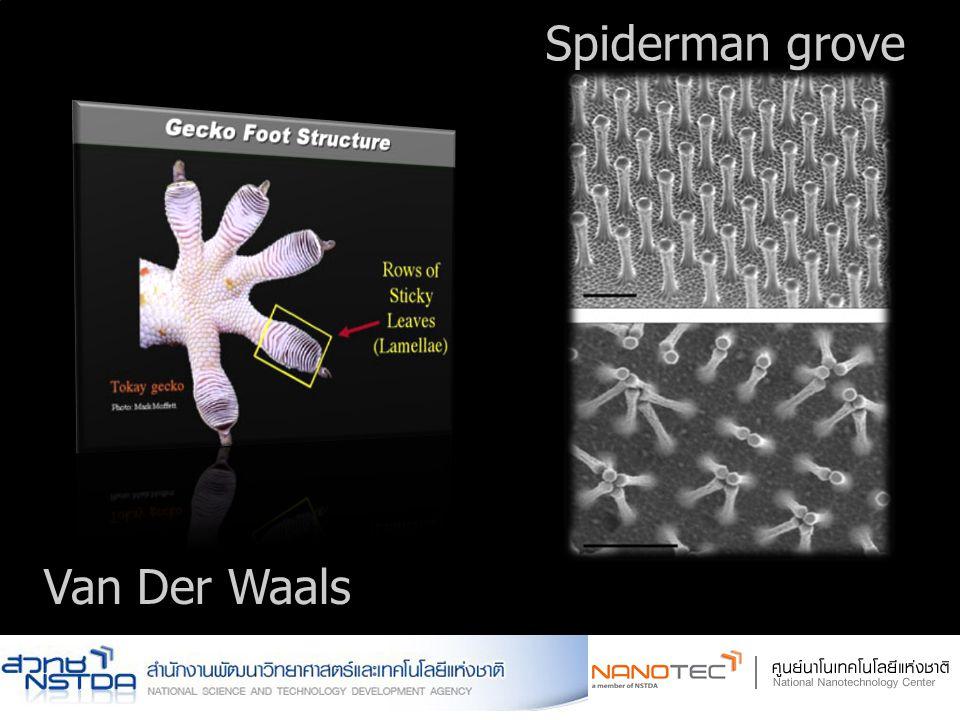 Van Der Waals Spiderman grove