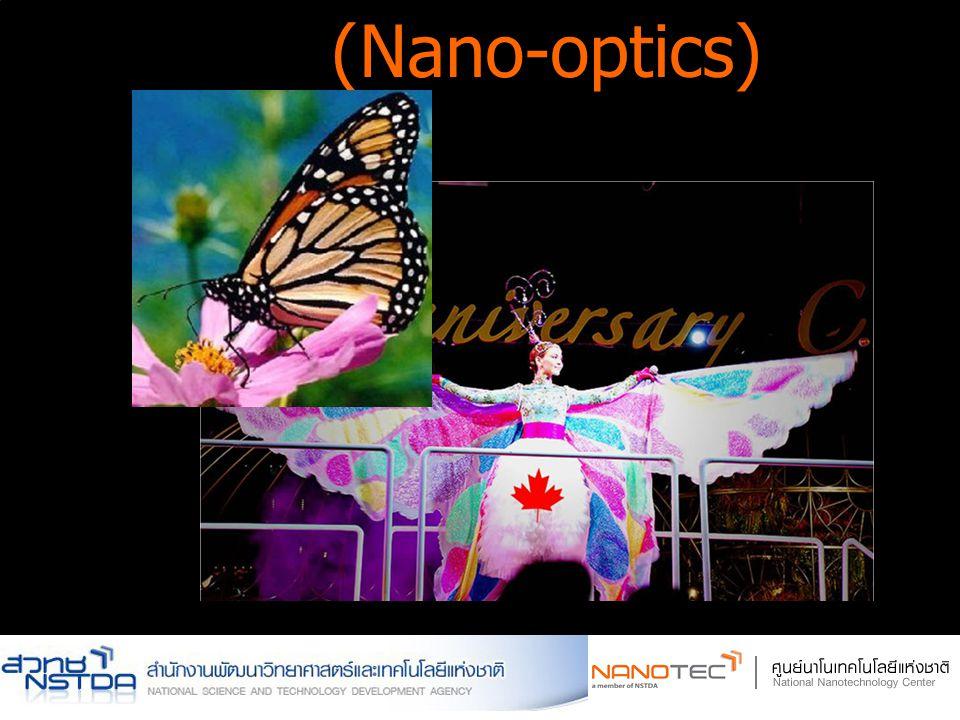 (Nano-optics)