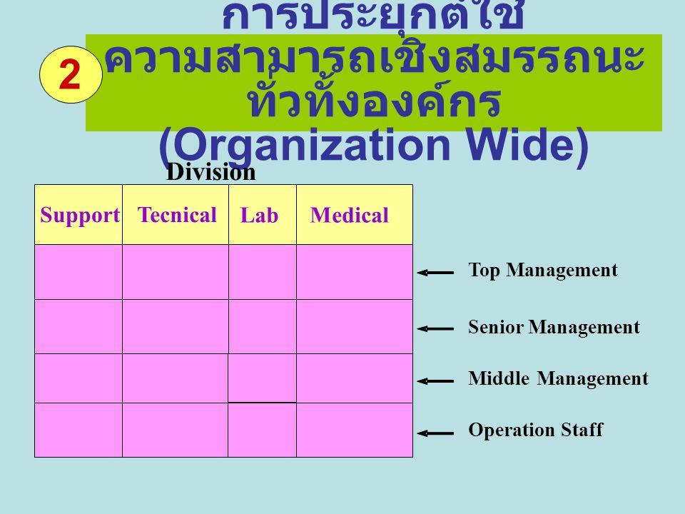 การประยุกต์ใช้ ความสามารถเชิงสมรรถนะ ทั่วทั้งองค์กร (Organization Wide) Division Top Management Senior Management MiddleManagement Operation Staff Sup
