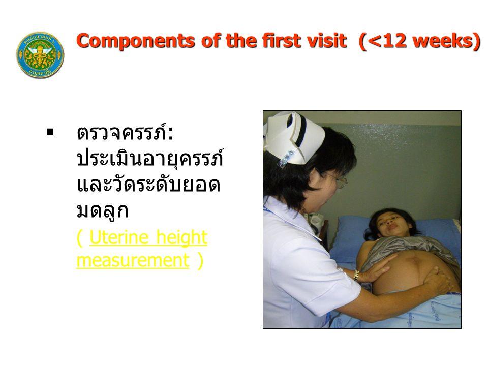  ตรวจครรภ์: ประเมินอายุครรภ์ และวัดระดับยอด มดลูก ( Uterine height measurement ) Components of the first visit (<12 weeks)