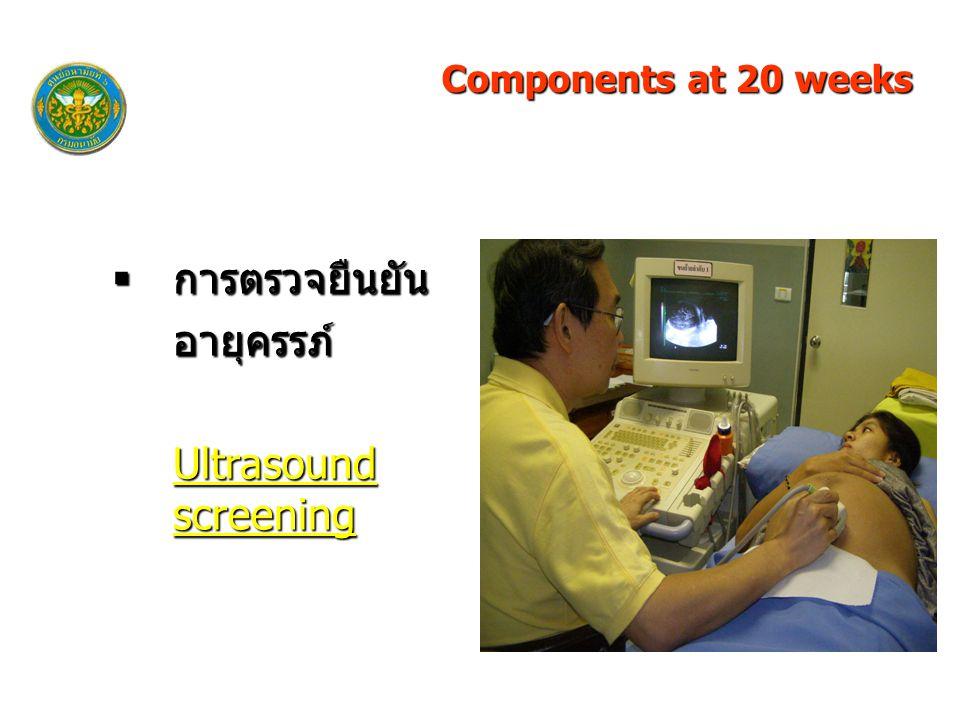  การตรวจยืนยัน อายุครรภ์ Ultrasound screening Components at 20 weeks