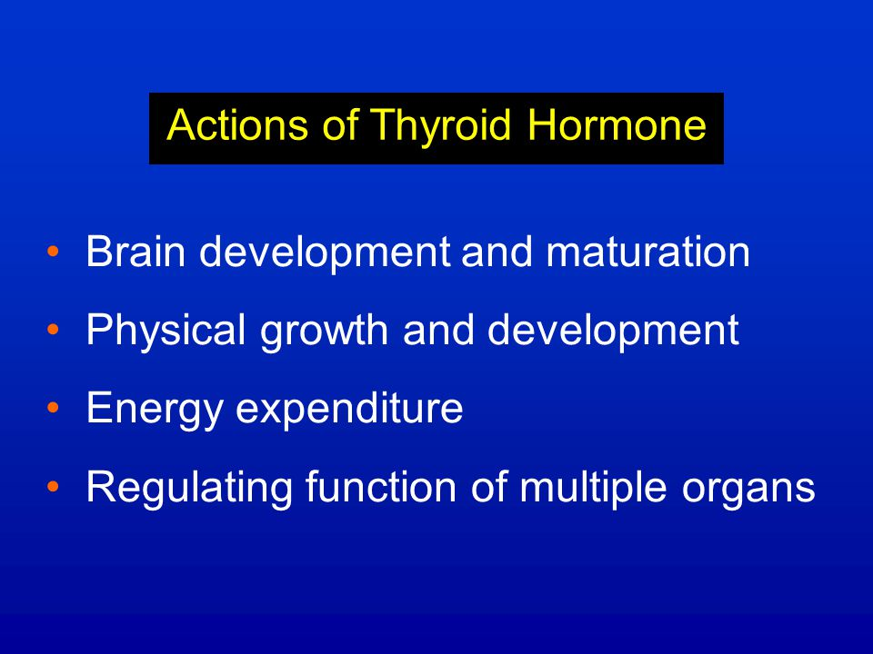 Actions of Thyroid Hormone Brain development and maturation Physical growth and development Energy expenditure Regulating function of multiple organs