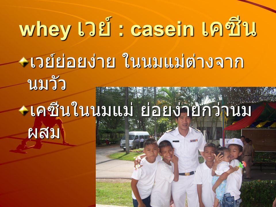 whey เวย์ : casein เคซีน เวย์ย่อยง่าย ในนมแม่ต่างจาก นมวัว เคซีนในนมแม่ ย่อยง่ายกว่านม ผสม