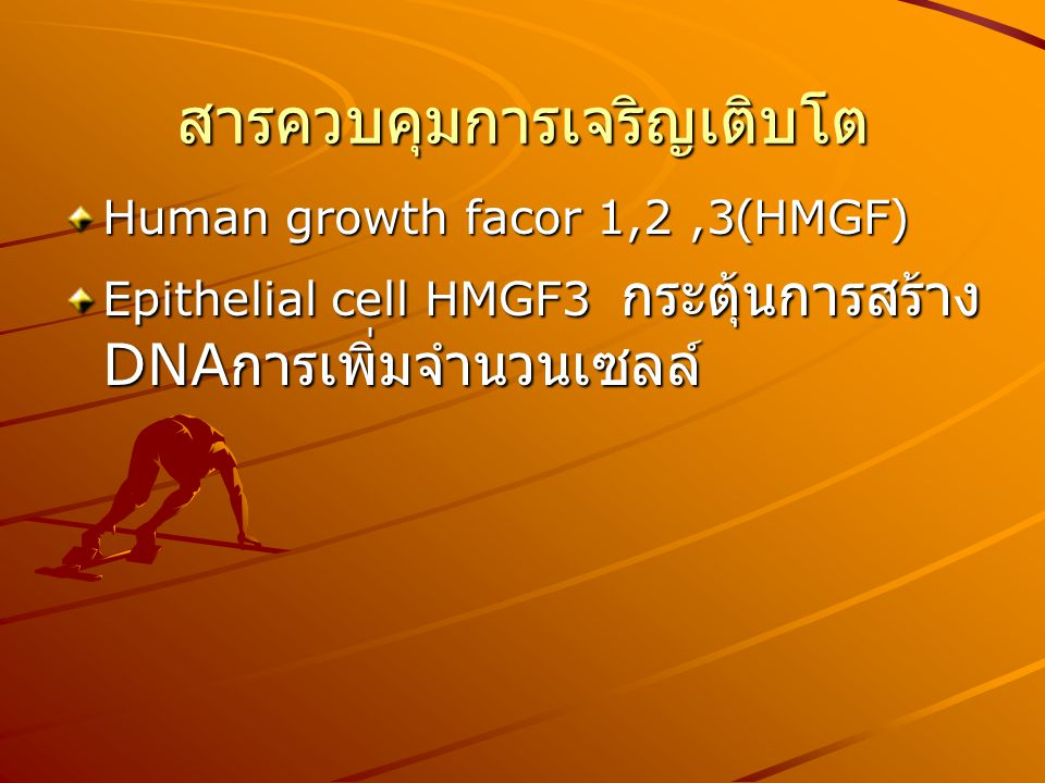 สารควบคุมการเจริญเติบโต Human growth facor 1,2,3(HMGF) Epithelial cell HMGF3 กระตุ้นการสร้าง DNA การเพิ่มจำนวนเซลล์